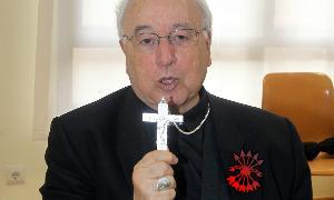 obisposegovia